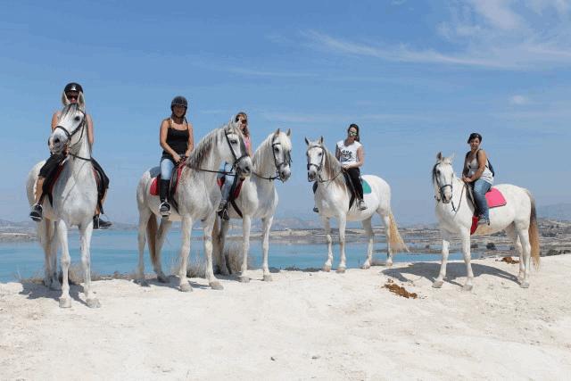 itsh 1592609730JMUNYV ref 1761 mobile 17 Horse Riding nearby Villamartin Plaza