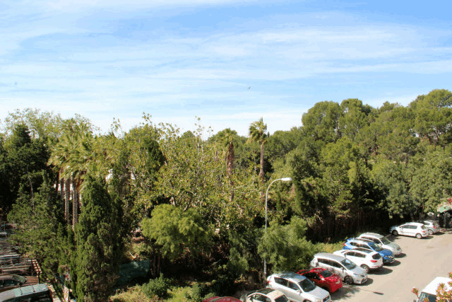 itsh 1573260885CPLUHS ref 1747 mobile 12 Views from the balcony Villamartin Plaza