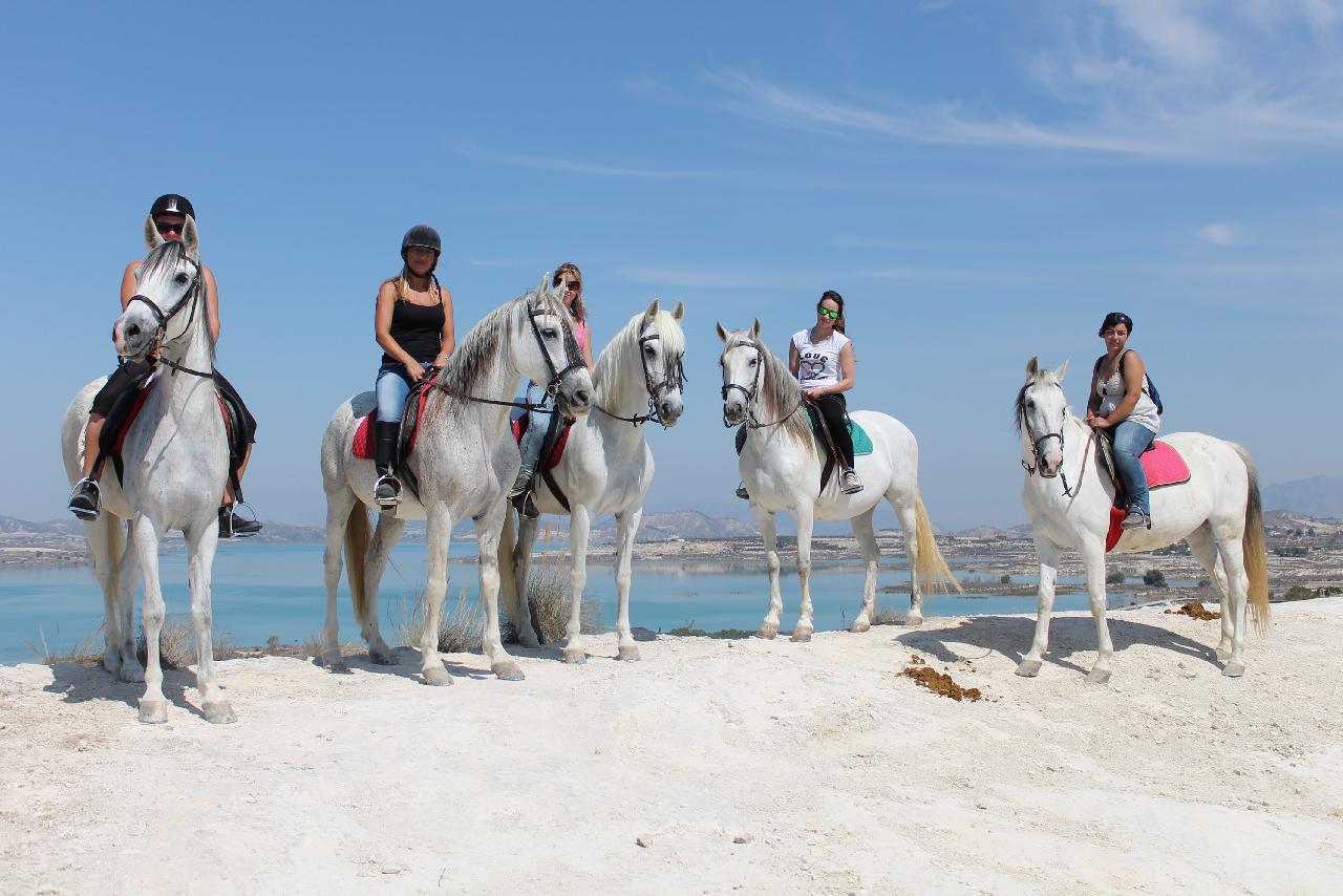 itsh 1521898492FAXKDE ref 1693 mobile 21 Horse riding nearby Villamartin Plaza