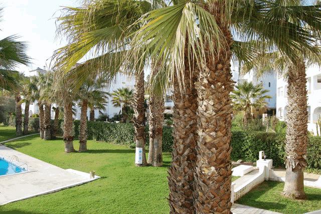 itsh 1522066085QGDZPF ref 1714 mobile 11 Communal pool views Villamartin Plaza
